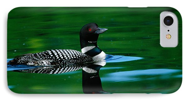 Common Loon In Water, Michigan, Usa IPhone 7 Case by Panoramic Images