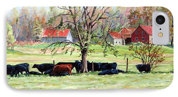 Cows Grazing In One Field  Phone Case by Richard T Pranke