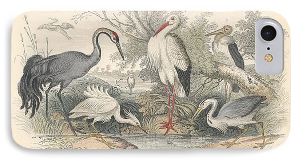 Cranes IPhone 7 Case by Oliver Goldsmith