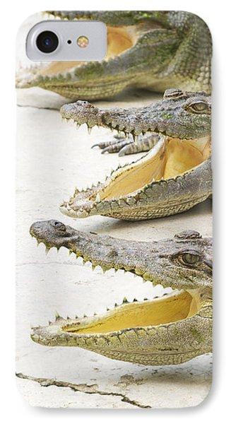 Crocodile Choir IPhone Case by Jorgo Photography - Wall Art Gallery