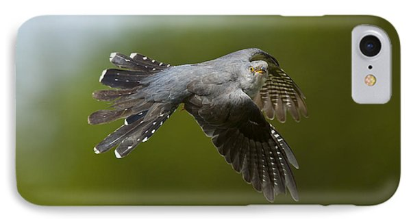 Cuckoo Flying IPhone Case by Steen Drozd Lund
