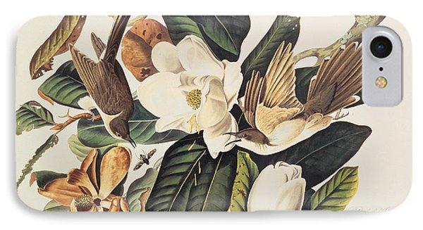 Cuckoo On Magnolia Grandiflora IPhone Case by John James Audubon