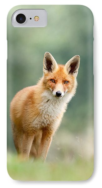 Curious Fox IPhone Case by Roeselien Raimond