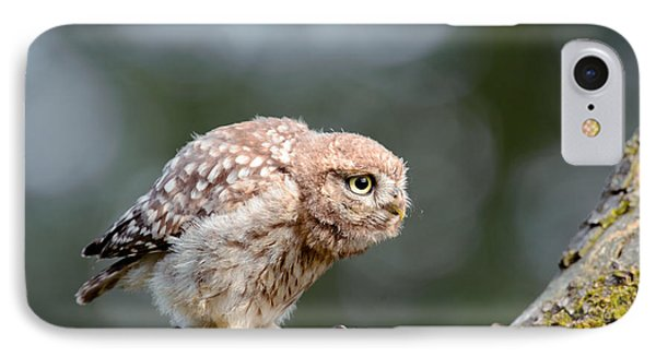 Cute Little Owlet IPhone Case by Roeselien Raimond