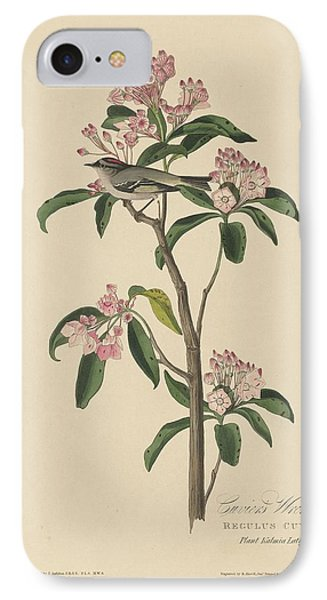 Cuvier's Wren IPhone 7 Case by John James Audubon