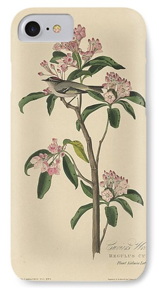 Cuvier's Wren IPhone Case by John James Audubon