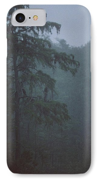 Cypress Swamp Phone Case by Kimberly Mohlenhoff
