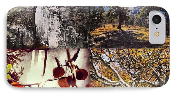 Dance Of The Trees IPhone Case by Bob Berwyn