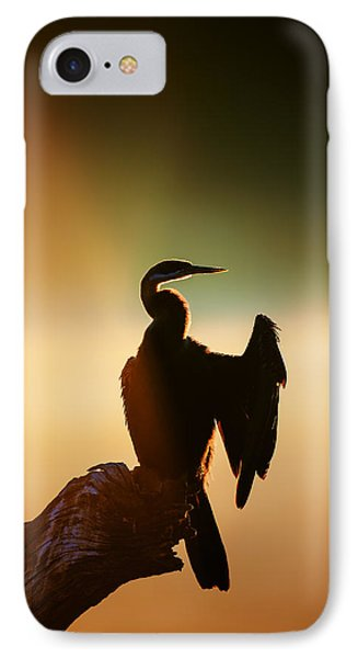 Darter Bird With Misty Sunrise IPhone Case by Johan Swanepoel