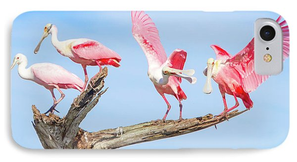 Day Of The Spoonbill  IPhone 7 Case by Mark Andrew Thomas