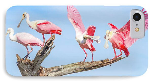 Day Of The Spoonbill  IPhone Case by Mark Andrew Thomas