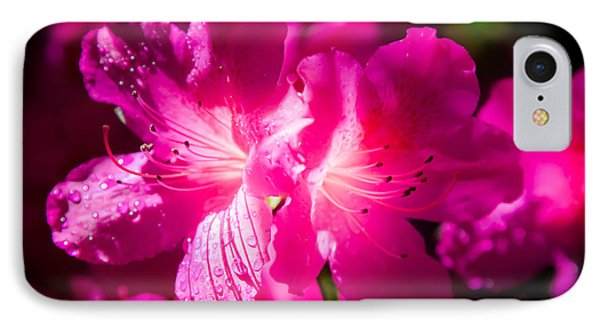 Delight In Creation IPhone Case by Karen Wiles