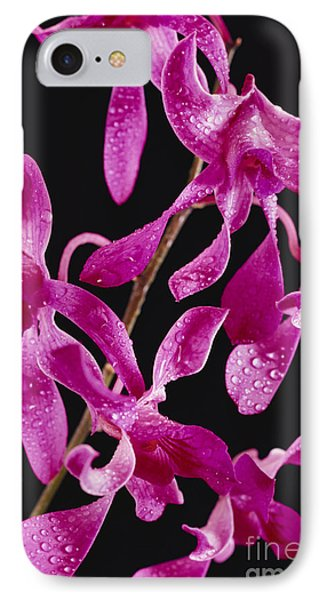 Dendrobium Orchids Phone Case by Carl Shaneff - Printscapes