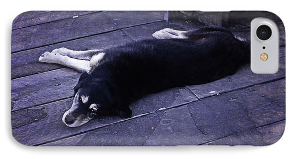Dog Days IPhone Case by Richard Farrington