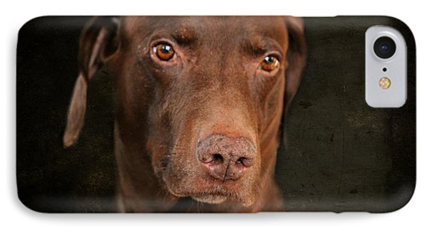Dog Portrait IPhone Case by Heike Hultsch