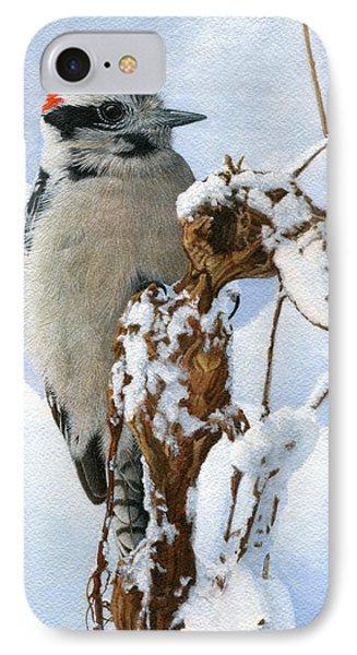 Downy Woodpecker  IPhone Case by Ken Everett