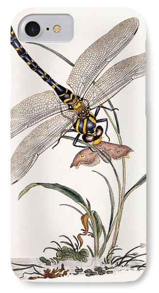 Dragonfly IPhone Case by Edward Donovan