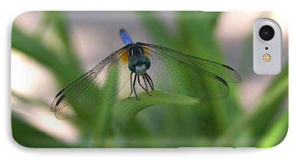 Dragonfly Wit An Attitude Phone Case by Debbie May
