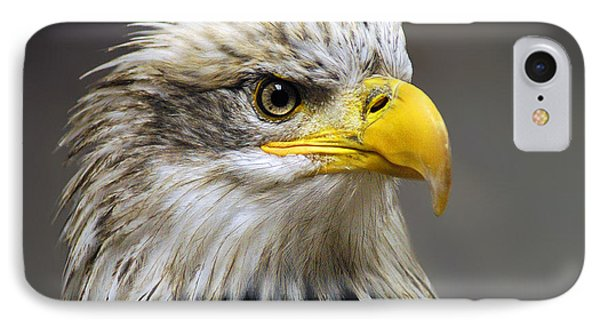 Eagle IPhone 7 Case by Harry Spitz