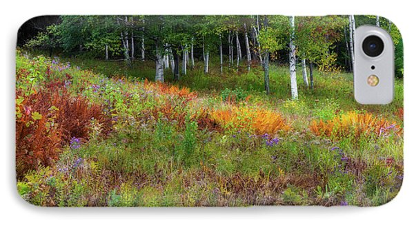 Early Autumn Colors IPhone Case by Bill Wakeley