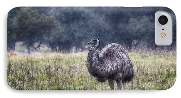Early Morning Stroll IPhone 7 Case by Douglas Barnard