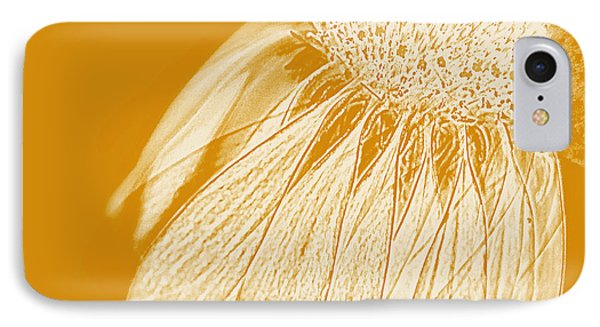 Echinacea IPhone Case by Linde Townsend