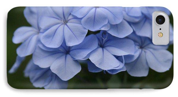 Eia Au La E Ke Aloha Blue Plumbago Phone Case by Sharon Mau