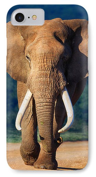 Elephant Approaching IPhone Case by Johan Swanepoel