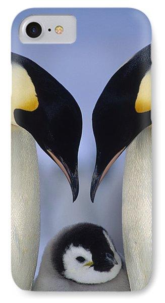 Emperor Penguin Family IPhone Case by Tui De Roy