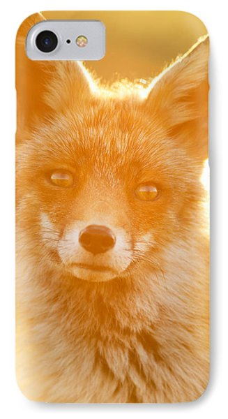 Enlightened Fox IPhone Case by Roeselien Raimond