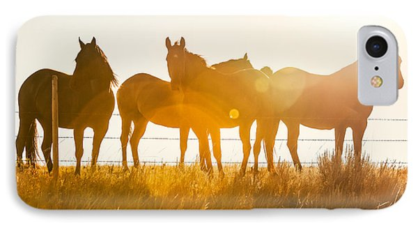 Equine Glow IPhone Case by Todd Klassy