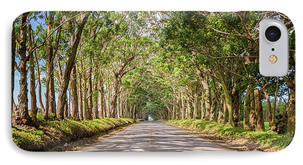 Eucalyptus Tree Tunnel - Kauai Hawaii IPhone Case by Brian Harig