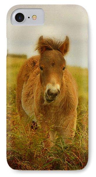 Exmoor Wild Pony Phone Case by Carla Parris