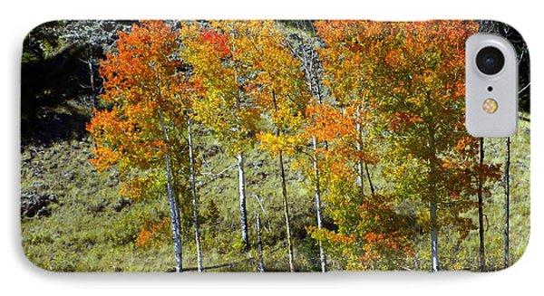 Fall In Colorado Phone Case by Marty Koch