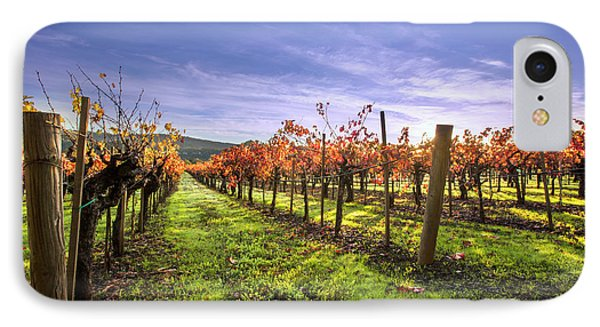 Fall Leaves At The Vineyard IPhone Case by Jon Neidert