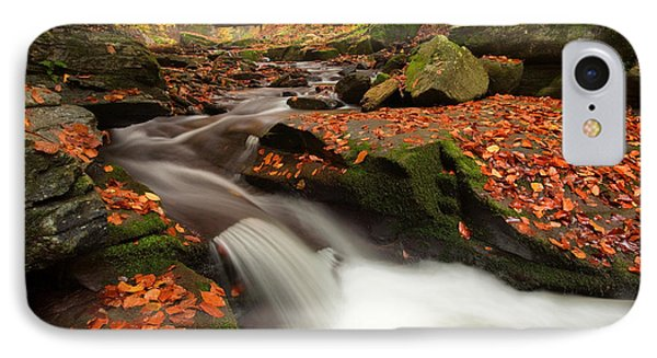 Fall Power Phone Case by Evgeni Dinev