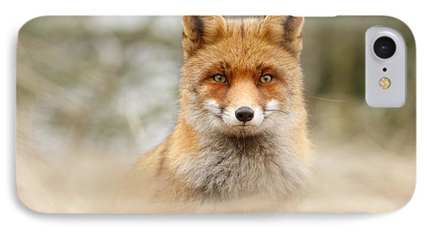 Fantastic Mr Fox IPhone Case by Roeselien Raimond