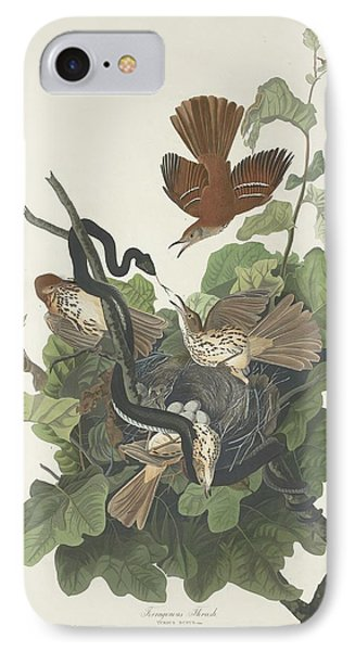 Ferruginous Thrush IPhone Case by John James Audubon