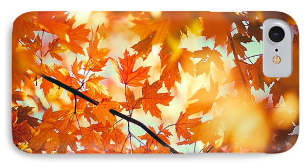 Field Of Orange IPhone Case by Todd Klassy