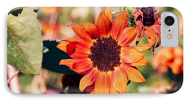 Fire Flower Phone Case by Jonathan Michael Bowman