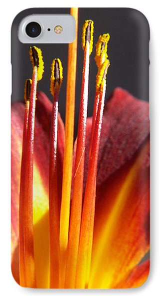 Fire Lily IPhone Case by Amy Fose