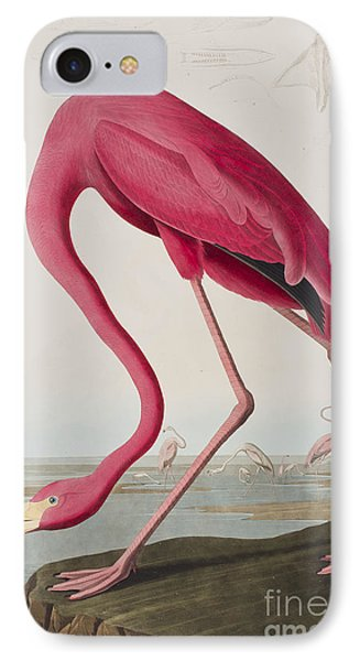 Flamingo IPhone 7 Case by John James Audubon