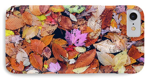 Floating Autumn Leaves On A Lake IPhone Case by Morris Finkelstein
