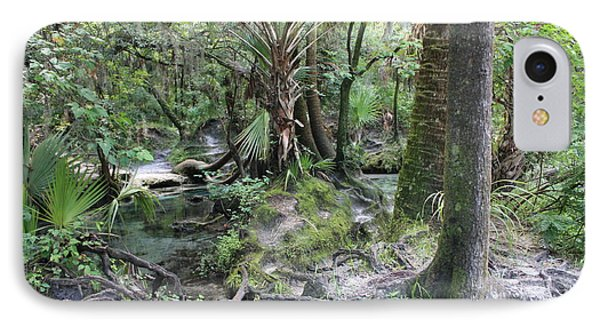 Florida Landscape - Lithia Springs Phone Case by Carol Groenen