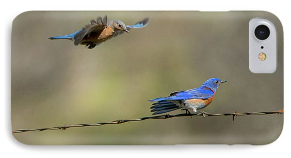 Flying To You IPhone Case by Mike Dawson