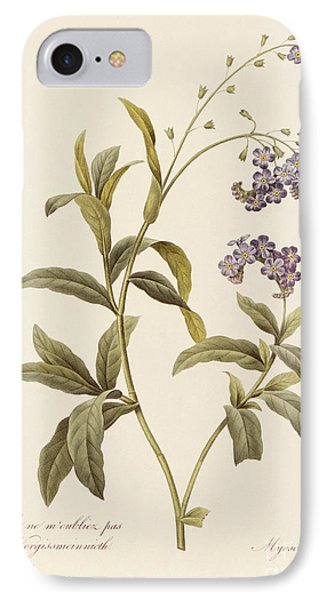 Forget Me Not Phone Case by Pierre Joseph Redoute