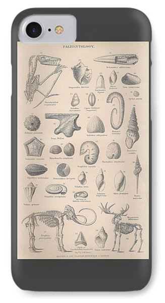 Fossils, Paleontology IPhone Case by Victorian Engraver