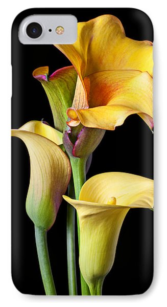 Four Calla Lilies IPhone Case by Garry Gay