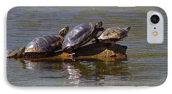 Four Red-eared Slider Turtles IPhone Case by Sharon Talson