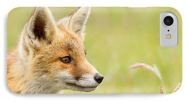 Fox Kit Dreams IPhone Case by Roeselien Raimond